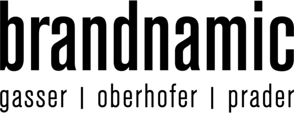 Werbeagenturen & Partner Brandnamic Logo